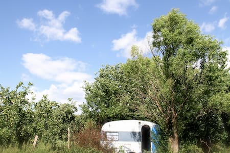 Blue Waggoon - Wohnwagen/Wohnmobil