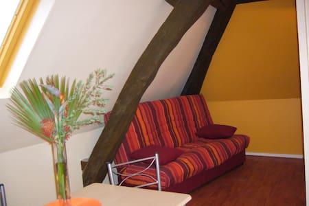 Studio sous les toits, proche châteaux de la Loire - Château-Renault