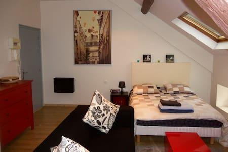 Grand Studio Meublé, Forbach centre - Apartmen