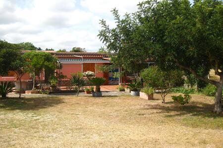 Casa Vacanza La Ciaccia 1 - House