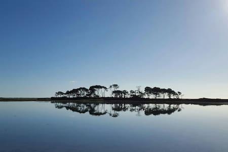 Gîte de l'île  aux pins - House