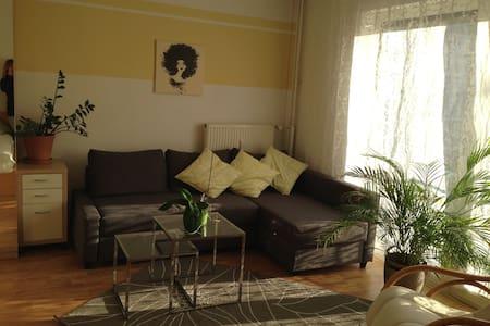 helle 1-ZKBB mit Wohnküche in bester Lage - Mannheim - Wohnung