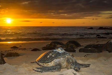 II True Hawaiian Getaway w/Pool! - Huoneisto