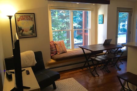 Sunny, Cozy, Pet-Friendly Aspen Apt - Aspen