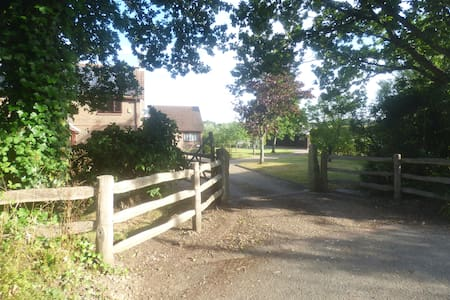 New Forest Village Accomodation - Bed & Breakfast