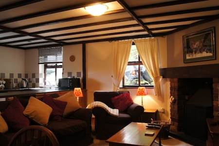 Self catering cottage on the banks of river Dulas - Pantperthog