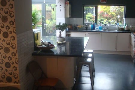Stunning Victorian Terrace single room - Winchester - Huis