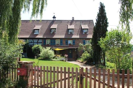 La Ferme du Heubuhl gîte à Obersteinbach - Apartemen