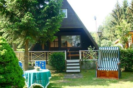 Ferienhaus direkt am See - Bungalow