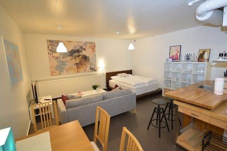 Centrally located studio apartment - Reykjavík - Wohnung
