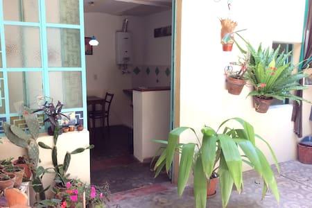Amplio estudio con patio y cocina - Hus