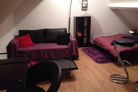 Chambre pour 2 en comble aménagé - Maison