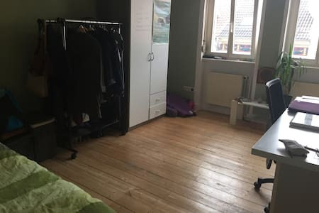 Full furnish room Darmstadt/TU Darmstadt - Daire