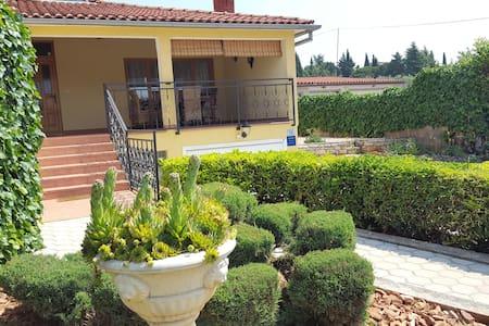 House Mango - Dům