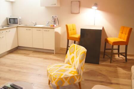 Studio in heart of St Remy of Pce - Saint-Rémy-de-Provence - Apartment