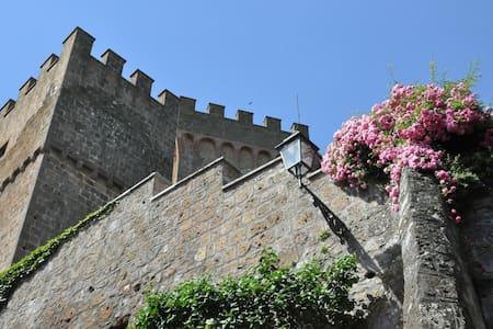 Castello Viterbese - Viterbese 3, sleeps 3 guests - Schloss