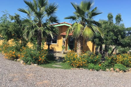 """Ground level casita with its own separate patio and kitchenette.Very private. Enjoy drinks on your patio and watch the whales  swim by.   Easy walk to La Poza beach or into the charming """"Pueblo Magico"""" town of Todos Santos, Mexico. Lovely ocean breezes and waves crashing."""