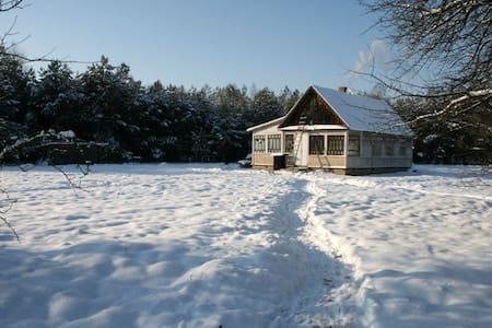 «Арт-берлога» в сосновом лесу - Rahozna - Ház