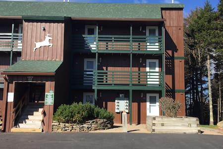 24 Mountain Crest, Snowshoe, WV - Condominium
