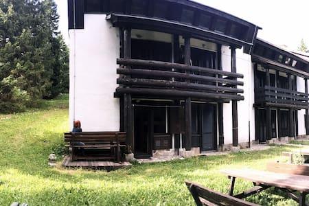 Apartment on Rogla - Rogla