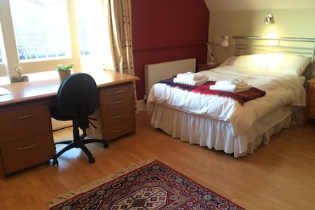 A large double room near Christies - Manchester - House