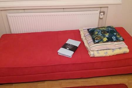 Livingroom bed 2km from jyväskylä Centrum - Hus