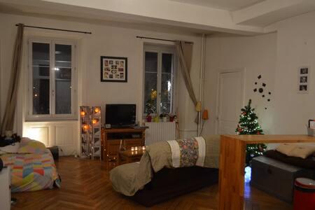 Studio avec cachet en Hyper Centre - Bourg-en-Bresse - Appartement