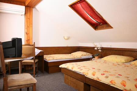 Private triple room*** 2. free wifi, free parking - Medvode