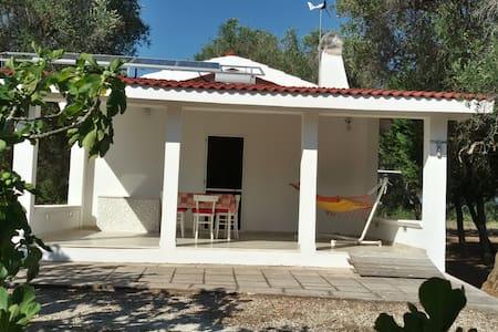 La casetta di Lelia - House