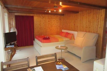 Cozy 1-room apartment (centre) #3 - Leilighet