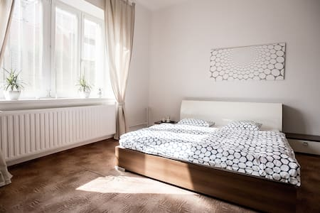 Two BIG Rooms Near CENTER+BREAKFAST&portable WIFI - Huoneisto