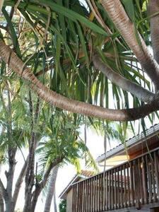 comfortable villa close to beach - House