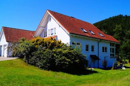 Schwarzwald-Erlebnis pur !!!   Herzlich willkommen - Apartment