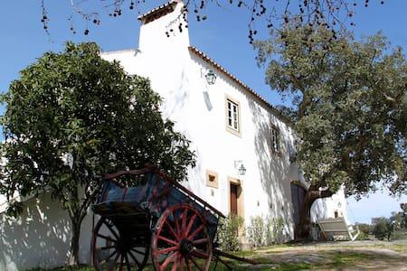 Quinta dos Ribeiros Suites - Alpalhão - Stadswoning