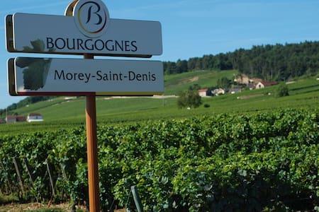 Chambre Vue sur Vignoble ancien Domaine viticole - Morey-Saint-Denis - Talo