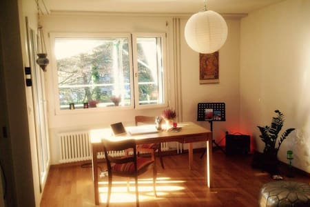 Welcome to my cosy place - Zürich - Wohnung