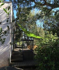 Maison entre plages et maquis - Sotta - House
