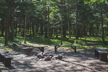 Terrain de camping #1 - Egyéb