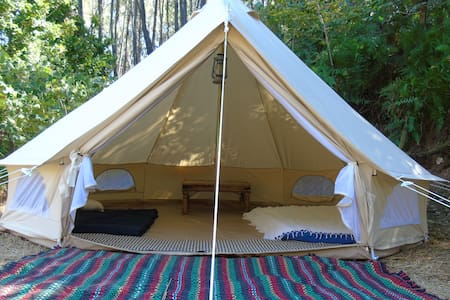 *Bell tent under the cherry tree* - Tent