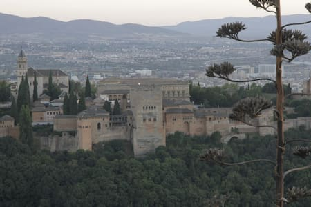 Granada Apartaments 2 - Alhendín - Loft