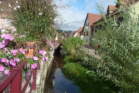 Take a break on the route de vin in Alsace - Apartemen