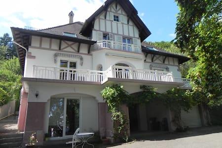 chambre d'hotes dans villa de caractere THANN - Thann - Guesthouse