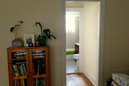 Big bright quiet newly renovated 1-br in the Slope - Brooklyn - Appartamento