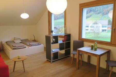 Modernes, helles Studio im Weinbaudorf Fläsch - Fläsch - Huoneisto