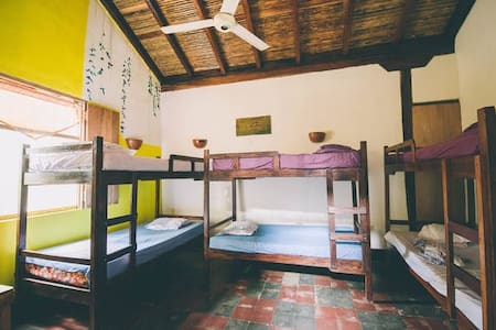 Bed In Mix Dormitory Room(Bed2) - Casa