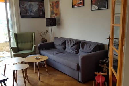 Room in a spacious appartement - Appartement