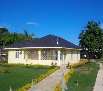 Canary House - Ház