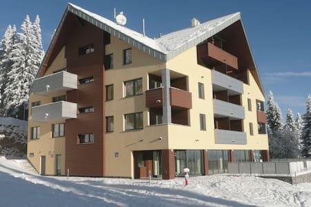 Apartment 4+1+1 - Apartment