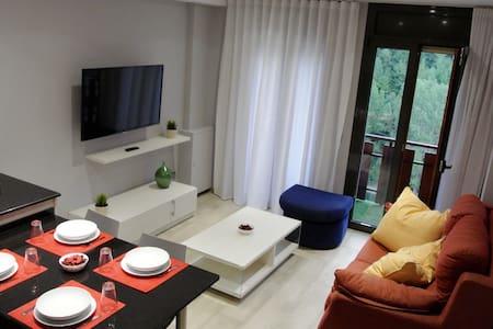 Apartamento 2 habitaciones centrico - La massana  - Apartemen