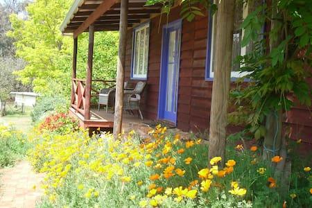 Westlington Brook studio cottage - Chalet
